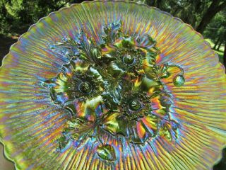 Northwood Poppy Show Antique Carnival Art Glass Plate Green Fantastic Example