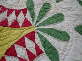 Pattern 19th c Whigs Defeat Twirling Bud Antique QUILT 10