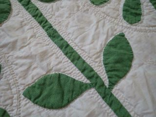 Pattern 19th c Whigs Defeat Twirling Bud Antique QUILT 11