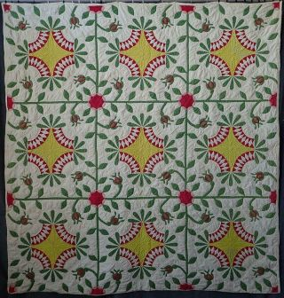Pattern 19th C Whigs Defeat Twirling Bud Antique Quilt