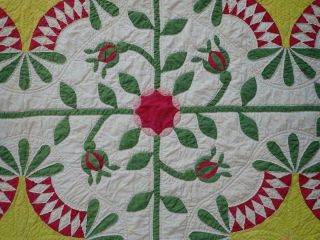Pattern 19th c Whigs Defeat Twirling Bud Antique QUILT 2
