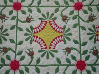 Pattern 19th c Whigs Defeat Twirling Bud Antique QUILT 4