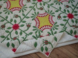 Pattern 19th c Whigs Defeat Twirling Bud Antique QUILT 7