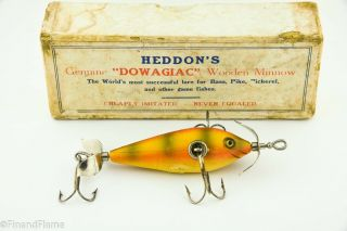 Heddon Fat Body 100 Lure Early Perch Cup Rig 3t 1 Bw In White Pasteboard Box Sk1
