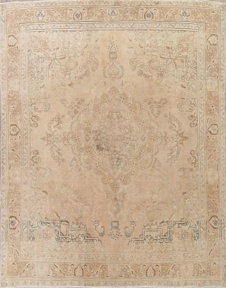 Distressed Old Oriental Rugs Hand - Knotted Wool Living Room Muted Carpet 10x13