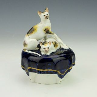 Antique Staffordshire Pottery - Cat Decorated Quill Stand Inkwell Figure