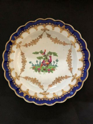 Dr Wall First Period Worcester Exotic Birds Scalloped Plate C1770