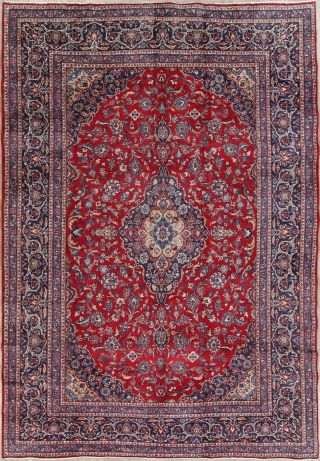 8x12 Traditional Wool Hand - Knotted Floral Oriental Rug Classic Carpet