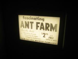 Vtg 16mm Toy Film Commercial - Live Ant Farm A2