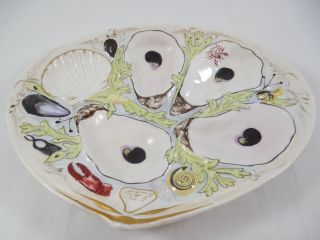 Antique Union Porcelain Upw Clam Shape Oyster Plate