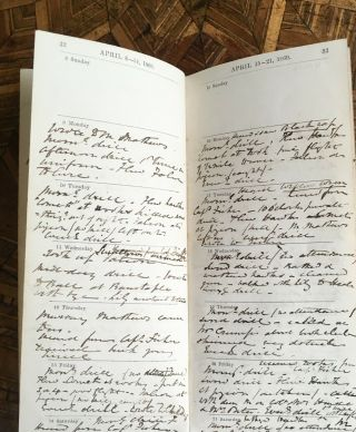1849 - 1884 DIARY ARCHIVE: Falconry in the British Isles Artist WILLIAM BRODRICK 9