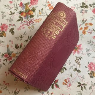 The Old Curiosity Shop By Charles Dickens Waverley Book C.  1920s Hardback