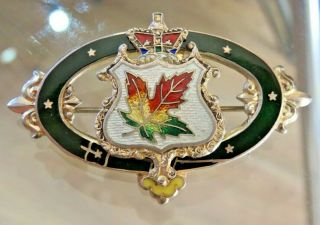 Vintage Silver & Guilloche Enamel Canada Maple Leaf Crown Crest Brooch Rd 1902