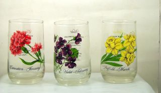 Vintage Brockway Flower Of The Month Glass Tumbler Set Of 9