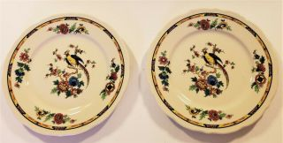 "2 Vintage Syracuse China Restaurant Ware Colorful Pheasant 9 "" Lunch Plates"