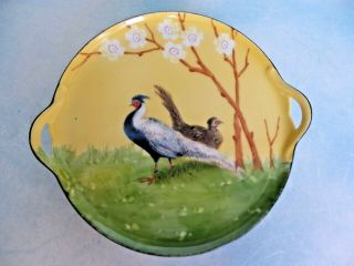 R.  S.  Germany Vintage Pierced Handles Small Round Dish Plate With Peacocks 7 ""