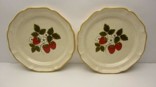 """Vintage Pair Mikasa Strawberry Festival 10.  5 """" Dinner Plates Eb 801 Made In Japan"""