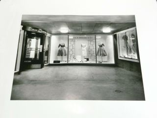 Large Vintage Chas.  A Stevens Clothing Store Front Photograph Picture (a10)
