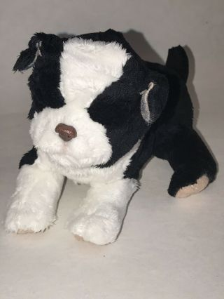 "Hasbro 2009 Furreal Friends 7 "" Black & White Border Collie Puppy Dog Newborn"