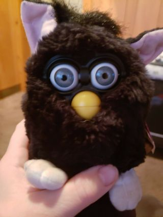 Furby Buddies Solid Black Gray Eyes 1998 Tiger Electronics Nwt