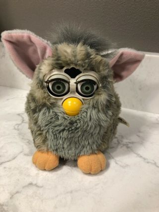1998 Furby Model 70 - 800 Gray Body/green Eyes 1st Gen Tiger Odd Behavior
