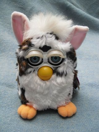 "6 "" Leopard Spotted Furby Tagged Tiger 1999"