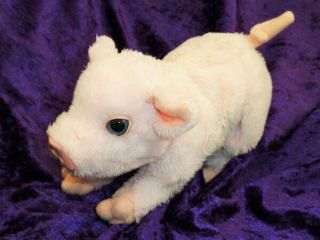 "Furreal Newborn Baby Pig Plush Toy 2006 Moves,  Oinks 7 "" X5 "" Interactive"