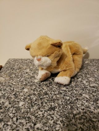 Newborn Tan Cream Kitten Cat Baby Toy Hasbro Furreal Friends 2003 Fur Real Cute