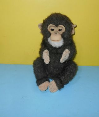 "Hasbro Furreal Fur Real Friends Cuddle Chimp Chimpanzee 8 "" Furreal Baby Monkey"