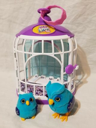 Little Live Pets Tweet Talking Birds With Cage