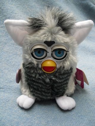 "6 "" Racoon Striped Furby Tag Dated 1999"