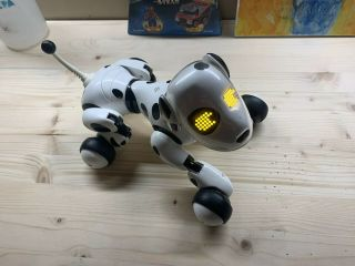 Black Zoomer Puppy Robotic Voice Interactive Dog Spin Master